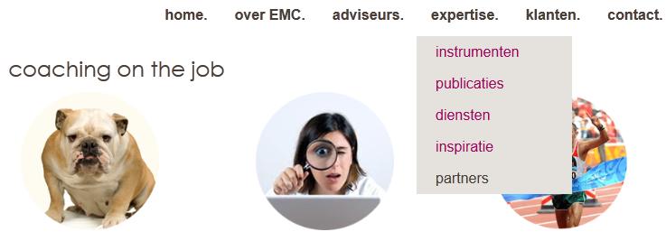 Voorbeeld menu in Wordpress